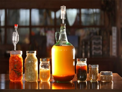 Top 3 Product Types in India Fermentation Chemicals Market - TechSci Blog