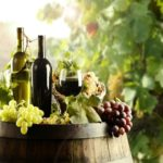 Global Organic Wine Market