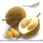 Durian Fruit Market