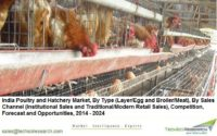 Poultry and Hatchery Market