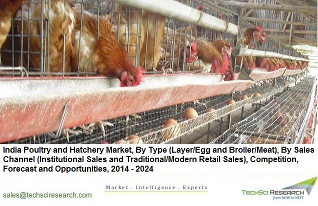 Poultry and Hatchery Market
