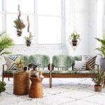 Indoor Plants Market