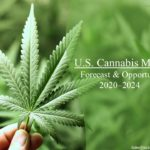 US Cannabis Market