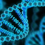 Global Bioinformatics Market