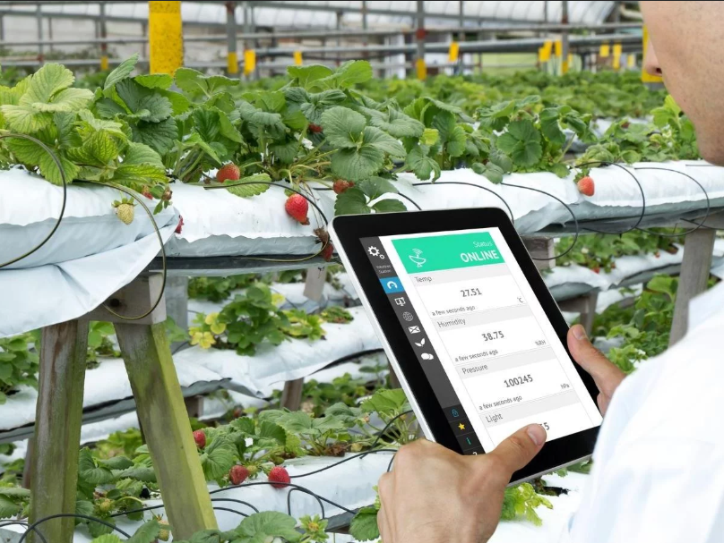 United States Smart Greenhouse Market
