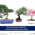 Bonsai Market