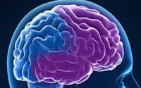 Frontotemporal Dementia Market