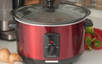 India Electric Rice Cooker Market
