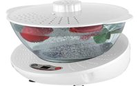 vegetable washer system market