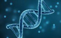 Global Bioinformatics Market - TechSci Research
