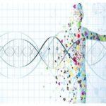 United States Precision Medicine Market