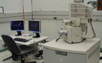 Global Electron Microscopy Market